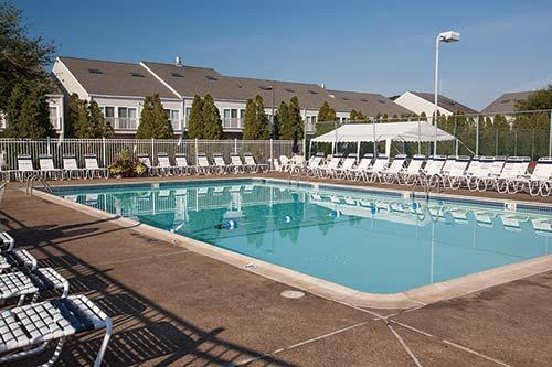 Shell Vacation Club Resort Directory The Cove At